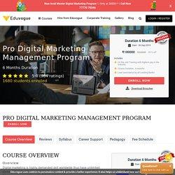 Professional Digital Marketing Course