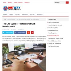 The Life Cycle of Professional Web Development