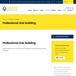 Professional Link Building Service Provider