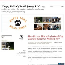 How Do You Hire a Professional Dog Training Service In Marlton, NJ?