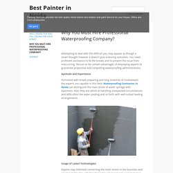 Why You Must Hire Professional Waterproofing Company?