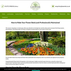 How to Make Your Flower Beds Look Professionally Maintained