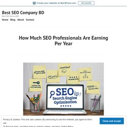 How Much SEO Professionals Are Earning Per Year – Best SEO Company BD