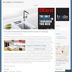 Why Hire Professionals for Bathroom Renovations in Tauranga?