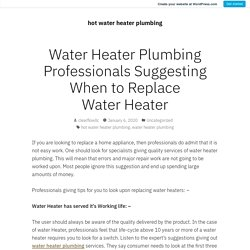Water Heater Plumbing Professionals Suggesting When to Replace Water Heater – hot water heater plumbing
