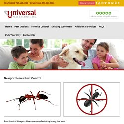Pest Control & Termite Control Professionals
