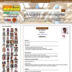 CV EBENISTE sur JOBBOIS, Le Site Emploi des Professionels du Bois - Partenaire PMEBTP