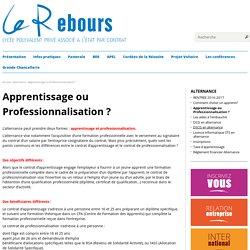 Apprentissage ou Professionnalisation ? — Lycée Le Rebours - Paris 13°