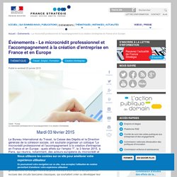 Le microcrédit professionnel et l'accompagnement à la création d'entreprise en France et en Europe