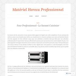 Four Professionnel- Le Savant Cuisinier – Matériel Horeca Professionnel