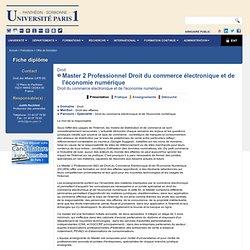 Master 2 Professionnel Droit du commerce électronique et de l'économie numérique