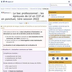 Le bac professionnel : les épreuves de LV en CCF et en ponctuel, 1ère session 2022 - Page 2/3 - Anglais LP