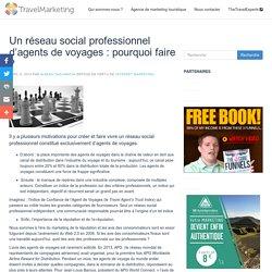 Un réseau social professionnel d'agents de voyages : pourquoi faire ? - Travel Marketing
