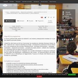 Licence professionnelle - Bibliothèques musées et fonds patrimoniaux- description- Formations de l'Université de Reims Champagne-Ardenne