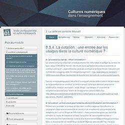 2.3.4. La curation : une entrée par les usages dans la culture numérique ?
