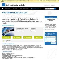 Licence professionnelle Activité et techniques de communication spécialité Lettres, culture et nouveaux médias