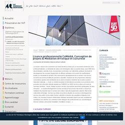 Licence professionnelle CoMédiA, Conception de projets & Médiation Artistique et culturelle