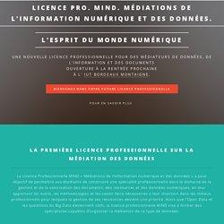 Licence professionnelle MIND. Médiations de l'information numérique et des données. Iut Bordeaux Montaigne