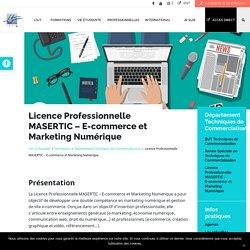 Licence Professionnelle MASERTIC - IUT La Rochelle
