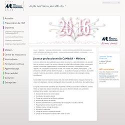 Licence professionnelle CoMédiA – Métiers