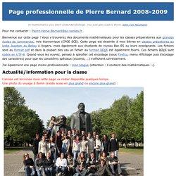 Page professionnelle de Pierre Bernard 2008-2009
