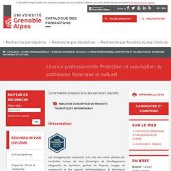 Licence professionnelle Protection et valorisation du patrimoine historique et culturel - Catalogue des formations