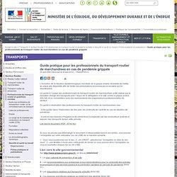MINISTERE DU TRANSPORT JUILLET 2007 Guide pratique pour les professionnels du transport routier de marchandises en cas de pandém