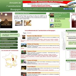 Liste des professionnels de l'Oenotourisme en Bourgogne de 0 à 10
