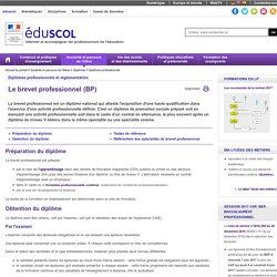 Diplômes professionnels - Le brevet professionnel (BP)