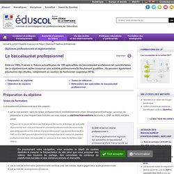 Diplômes professionnels - Le baccalauréat professionnel