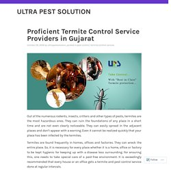 Termite Control Service in Gujarat - Keep Your Home Safe From pest