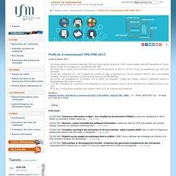 Profil du e-commerçant TPE/PME 2017