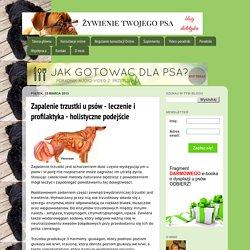 Żywienie Twojego Psa: Zapalenie trzustki u psów - leczenie i profilaktyka - holistyczne podejście