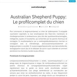 Australian Shepherd Puppy: Le profilcomplet du chien