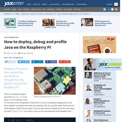How to deploy, debug and profile Java on the Raspberry Pi - JAXenter