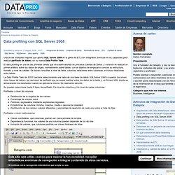 Data profiling con SQL Server 2008