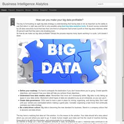 Business Intelligence Alalytics: How can you make your big data profitable?