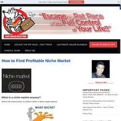 How to Find Profitable Niche Market - Rat Race Buster