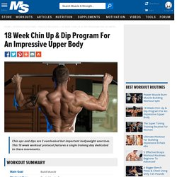 18 Week Chin Up & Dip Program For An Impressive Upper Body