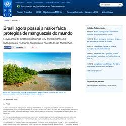 Brasil agora possui a maior faixa protegida de manguezais do mundo