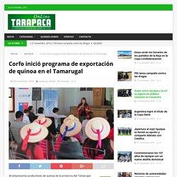 Corfo inició programa de exportación de quinoa en el Tamarugal – Tarapaca Online
