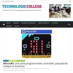 Micro:Bit. Une carte programmable, accessible, polyvalente ludique et évolutive. – SII Collège