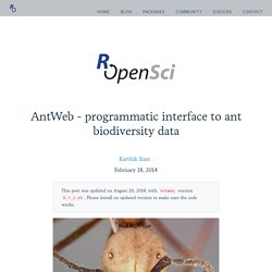 AntWeb - programmatic interface to ant biodiversity data