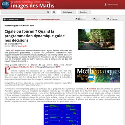 Cigale ou fourmi ? Quand la programmation dynamique guide nos décisions