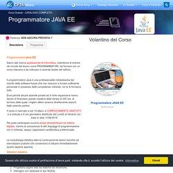 Programmatore JAVA EE - CFTA