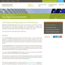 The programme and its benefits - Erasmus for Young Entrepreneurs