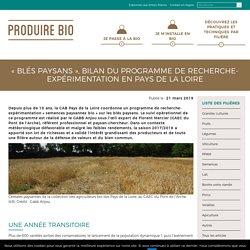 « Blés Paysans », bilan du programme de recherche-expérimentation en Pays de la Loire
