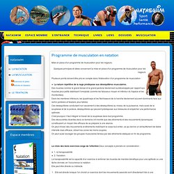Programme de musculation en natation