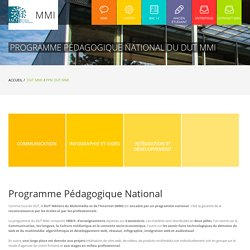MMI - Programme Pédagogique National