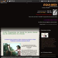 un programme de travail pour poulain - www.equi-midi.fr